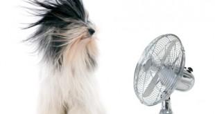 エアコン 扇風機