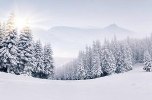 冬の電気代節約術