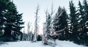 冬エアコン