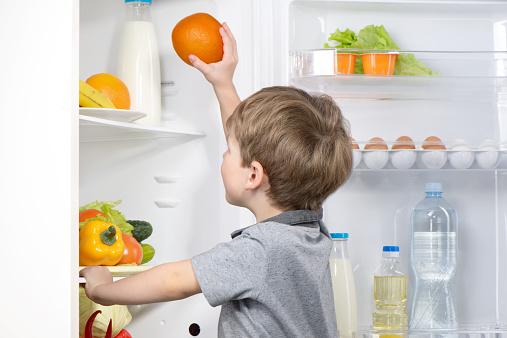 電気代 節約 冷蔵庫