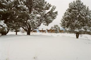 冬エアコン節約