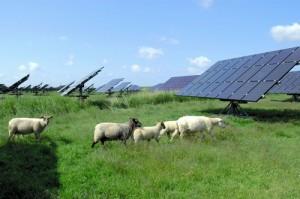 電力自由化は環境問題解決に