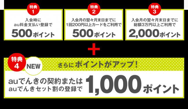 auでんきキャンペーン