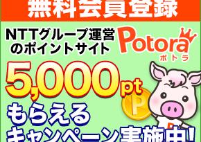 potora_entry_290x240