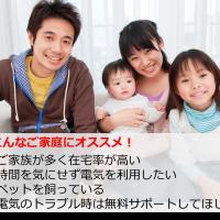 東京電力エナジーパートナー プレミアムプラン(2年契約)の特徴