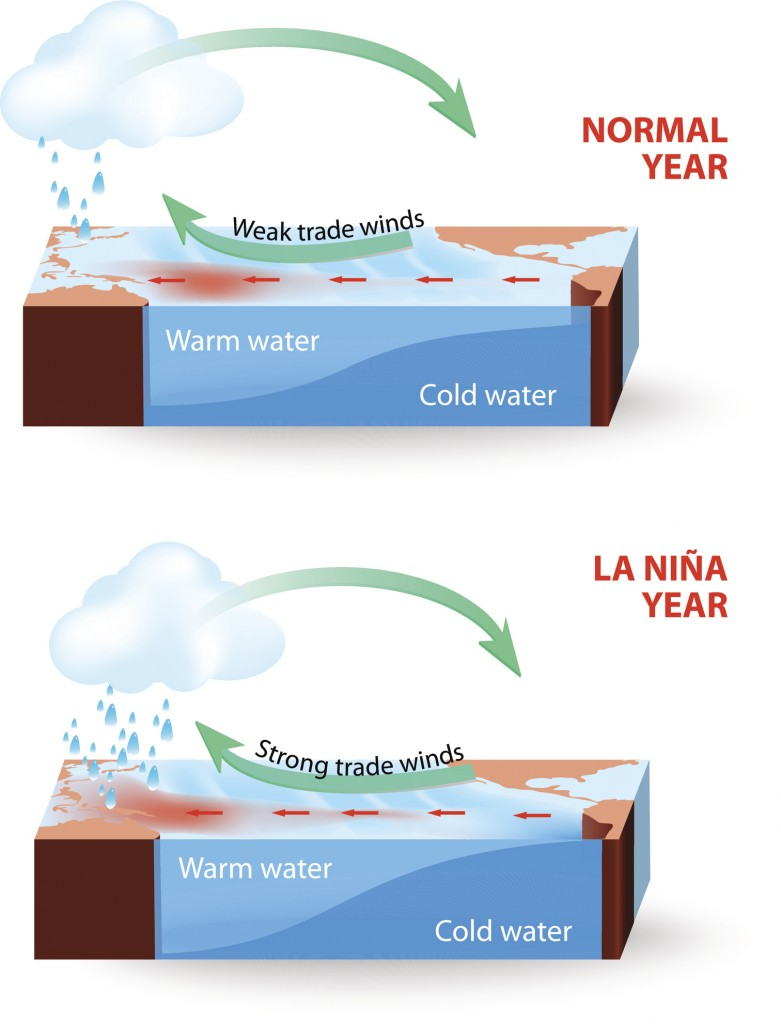 During La Nina years, the pool of warm oceanic waters shifts westward. Rainfall increases over Indonesia and the western Pacific region and decreases over the east-central and eastern Pacific Ocean. The climate is drier and colder off the coast of America.