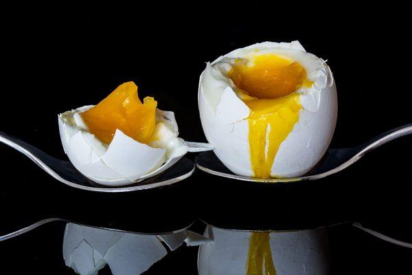egg-2161877_1280